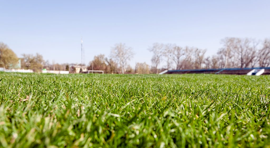 Empty Stadium Arena With Football Field. Football grass lawn